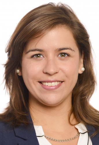 Sara Cerdas defende apoios para a transformação sustentável dos transportes públicos
